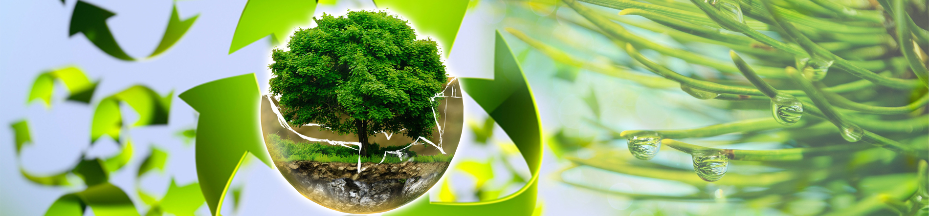 Trasporto rifiuti industriali e agricoli - trasporti rifiuti organici